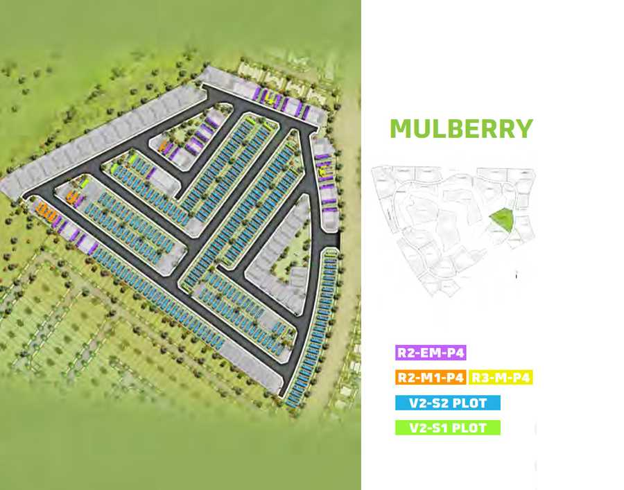 Mulberry – Area View